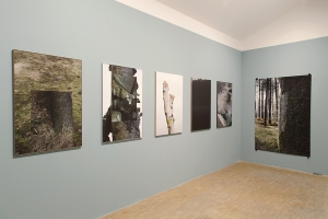 http://zoevdh.com/files/gimgs/th-29_stillwoodvan-der-haegenboutographies1.jpg